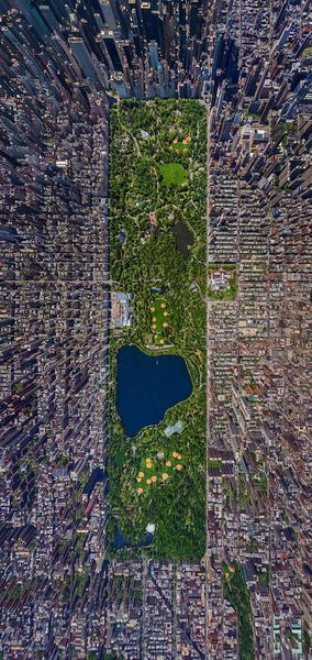 new-york-central park sergey Semenov