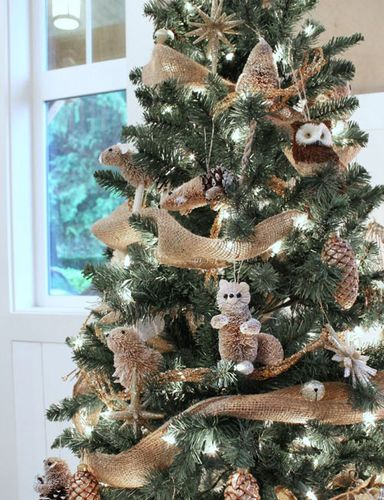 Christmas tree forest inspiration