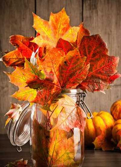 Autumn leaves in glass jar still life with gourds in background
