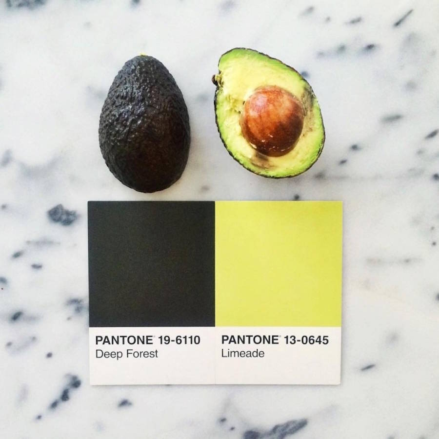 food-pantone-avocat